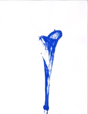 blue-image3