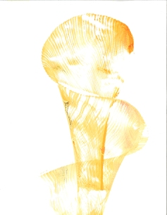 orange-image
